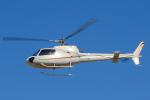 よっしぃさんが、名古屋飛行場で撮影したオートパンサー AS350B2 Ecureuilの航空フォト(写真)