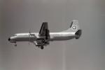 うすさんが、伊丹空港で撮影した全日空 YS-11A-500の航空フォト(写真)
