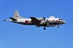 はるかのパパさんが、厚木飛行場で撮影した海上自衛隊 UP-3Cの航空フォト(写真)