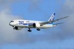 オポッサムさんが、那覇空港で撮影した全日空 787-881の航空フォト(写真)