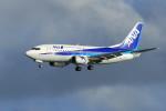 オポッサムさんが、那覇空港で撮影したANAウイングス 737-5L9の航空フォト(写真)
