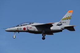 まんぼ しりうすさんが、岐阜基地で撮影した航空自衛隊 T-4の航空フォト(写真)