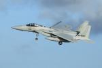 オポッサムさんが、那覇空港で撮影した航空自衛隊 F-15J Eagleの航空フォト(写真)