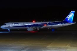 Amaizing787さんが、熊本空港で撮影した全日空 A321-211の航空フォト(写真)