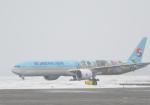 くーぺいさんが、新千歳空港で撮影した大韓航空 777-3B5/ERの航空フォト(写真)