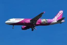 nh747dさんが、成田国際空港で撮影したピーチ A320-214の航空フォト(写真)