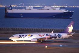 かぷちーのさんが、神戸空港で撮影したスカイマーク 737-86Nの航空フォト(写真)