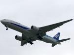 ken1992さんが、那覇空港で撮影した全日空 777-281/ERの航空フォト(写真)