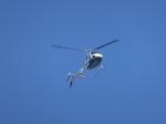 パピヨンさんが、東京ヘリポートで撮影したアカギヘリコプター AS350B Ecureuilの航空フォト(写真)