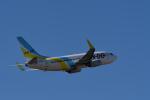 ミッキー2016さんが、中部国際空港で撮影したAIR DO 737-781の航空フォト(写真)