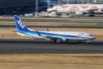 らっしーさんが、羽田空港で撮影した全日空 737-881の航空フォト(写真)