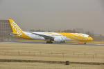 ポン太さんが、成田国際空港で撮影したスクート 787-9の航空フォト(写真)