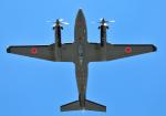 チャーリーマイクさんが、木更津飛行場で撮影した陸上自衛隊 LR-2の航空フォト(写真)
