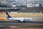 ハム太郎さんが、羽田空港で撮影したスカイマーク 737-8HXの航空フォト(写真)