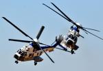 チャーリーマイクさんが、木更津飛行場で撮影した陸上自衛隊 EC225LP Super Puma Mk2+の航空フォト(写真)