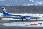 SFJ_capさんが、新千歳空港で撮影した全日空 A320-211の航空フォト(写真)