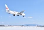 jelly fishさんが、女満別空港で撮影した日本航空 767-346の航空フォト(写真)