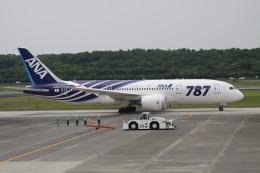 NH642さんが、熊本空港で撮影した全日空 787-881の航空フォト(写真)