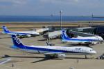 Espace77さんが、羽田空港で撮影した全日空 A321-211の航空フォト(写真)