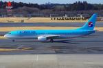 PASSENGERさんが、成田国際空港で撮影した大韓航空 737-9B5の航空フォト(写真)