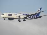 kayさんが、成田国際空港で撮影した全日空 787-881の航空フォト(写真)