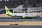 神宮寺ももさんが、成田国際空港で撮影したジンエアー 737-8SHの航空フォト(写真)