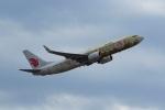 Mochi7D2さんが、成田国際空港で撮影した中国国際航空 737-89Lの航空フォト(写真)