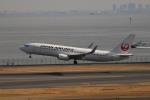 A350XWB-HNDさんが、羽田空港で撮影した日本航空 737-846の航空フォト(写真)