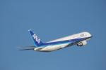 A350XWB-HNDさんが、羽田空港で撮影した全日空 767-381の航空フォト(写真)
