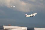 A350XWB-HNDさんが、羽田空港で撮影した日本航空 767-346の航空フォト(写真)