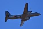 23Skylineさんが、茨城空港で撮影した航空自衛隊 YS-11A-402EAの航空フォト(写真)