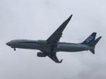 ken1992さんが、那覇空港で撮影した全日空 737-881の航空フォト(写真)
