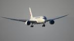 せせらぎさんが、中部国際空港で撮影した日本航空 787-846の航空フォト(写真)