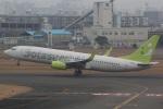 DONKEYさんが、宮崎空港で撮影したソラシド エア 737-81Dの航空フォト(写真)