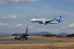 prado120さんが、静岡空港で撮影した全日空 737-881の航空フォト(写真)