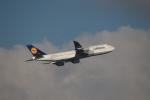 チェリーさんが、羽田空港で撮影したルフトハンザドイツ航空 747-830の航空フォト(写真)