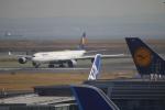 チェリーさんが、羽田空港で撮影したルフトハンザドイツ航空 A340-642の航空フォト(写真)