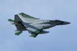 GNPさんが、茨城空港で撮影した航空自衛隊 F-15J Eagleの航空フォト(写真)