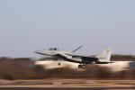 シマさんが、茨城空港で撮影した航空自衛隊 F-15J Eagleの航空フォト(写真)