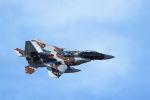 GNPさんが、茨城空港で撮影した航空自衛隊 F-15DJ Eagleの航空フォト(写真)