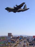 Mame @ TYOさんが、名古屋飛行場で撮影した航空自衛隊 C-130H Herculesの航空フォト(写真)