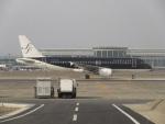 commet7575さんが、福岡空港で撮影したスターフライヤー A320-214の航空フォト(写真)