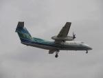 commet7575さんが、福岡空港で撮影したオリエンタルエアブリッジ DHC-8-201Q Dash 8の航空フォト(写真)