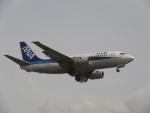 commet7575さんが、福岡空港で撮影したANAウイングス 737-54Kの航空フォト(写真)