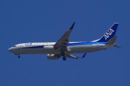 Semirapidさんが、福岡空港で撮影した全日空 737-881の航空フォト(写真)