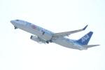 水月さんが、関西国際空港で撮影した全日空 737-881の航空フォト(写真)