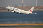 チェリーさんが、羽田空港で撮影した日本航空 737-846の航空フォト(写真)