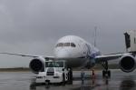 Take51さんが、新石垣空港で撮影した全日空 787-881の航空フォト(写真)