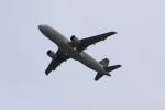 MOHICANさんが、関西国際空港で撮影した深圳航空 A320-214の航空フォト(写真)