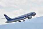 Take51さんが、伊丹空港で撮影した全日空 787-881の航空フォト(写真)